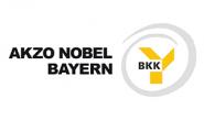 BKK Akzo Nobel